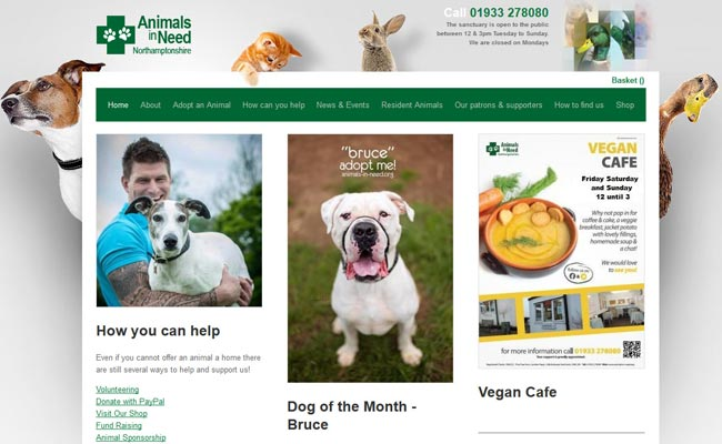 Animals in Need - Wellingborough