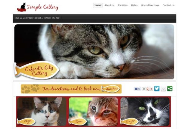 Temple Cattery