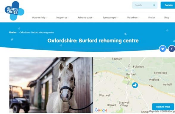 Blue Cross Rehoming Service - Burford