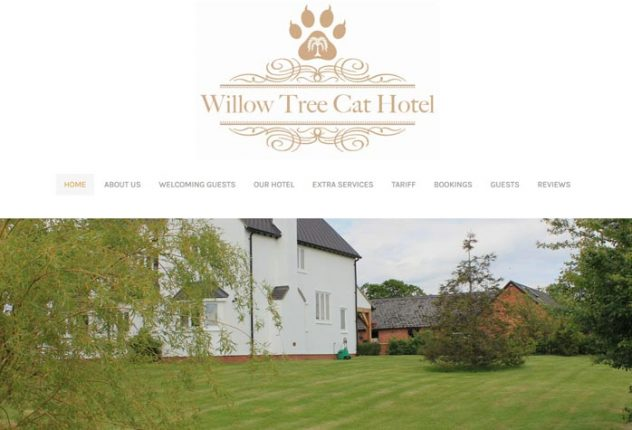 Willow Tree Cat Hotel