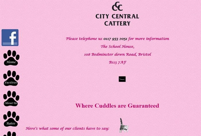City Central Cattery