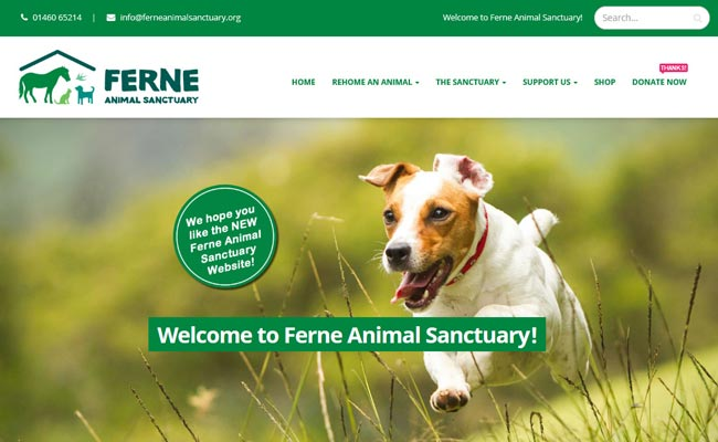Ferne Animal Sanctuary - Chard