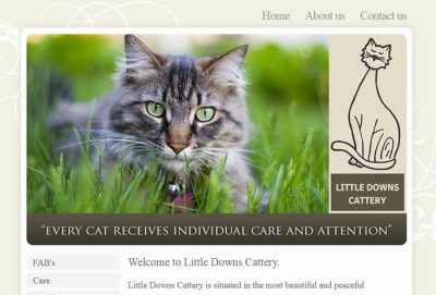 Little Downs Boarding Cattery
