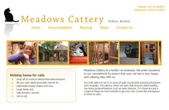 Meadows Cattery