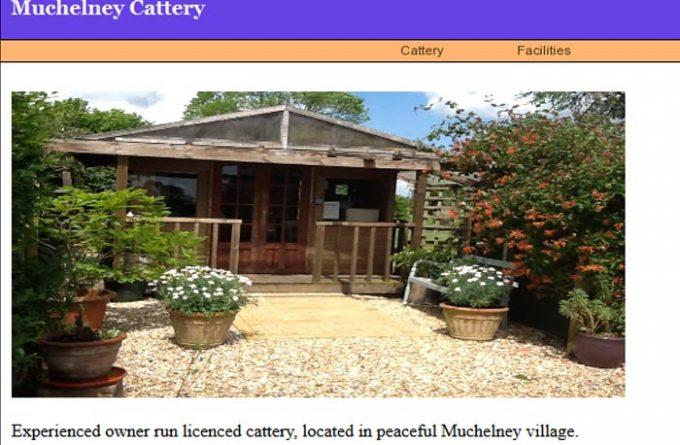 Muchelney Cattery