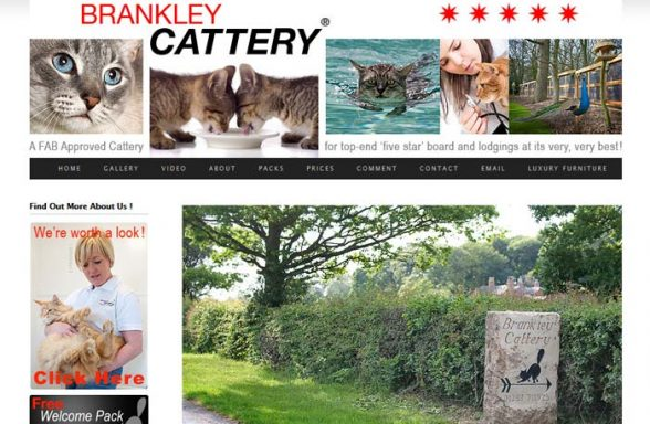 Brankley Cattery