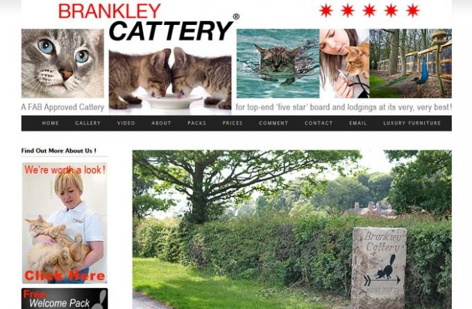 Brankley Cattery