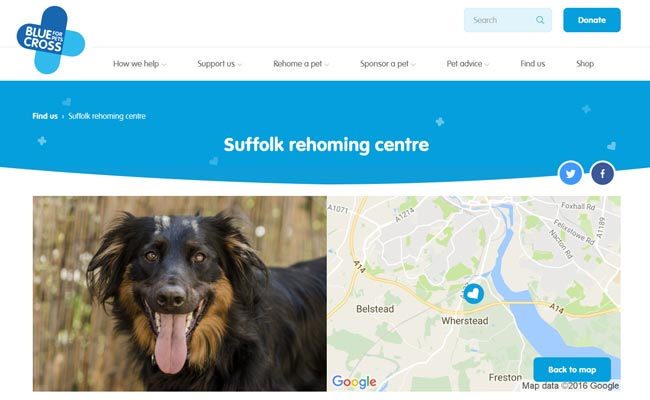 Blue Cross Rehoming Centre - Ipswich