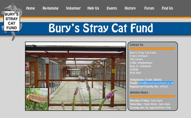Bury's Stray Cat Fund - Bury St. Edmunds