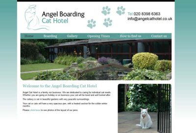 Angel Boarding Cat Hotel