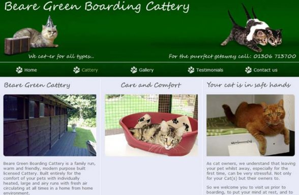 Beare Green Boarding Cattery