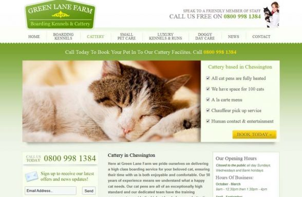 Green Lane Farm Cattery
