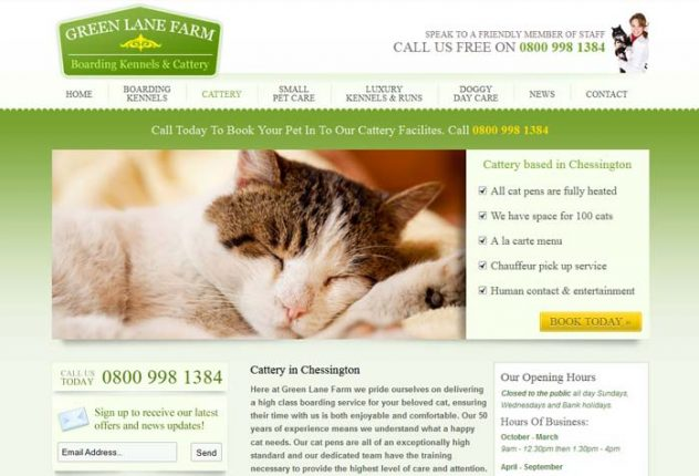 Green Lane Farm Cattery