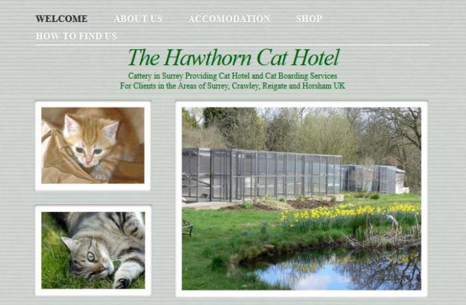 The Hawthorn Cat Hotel