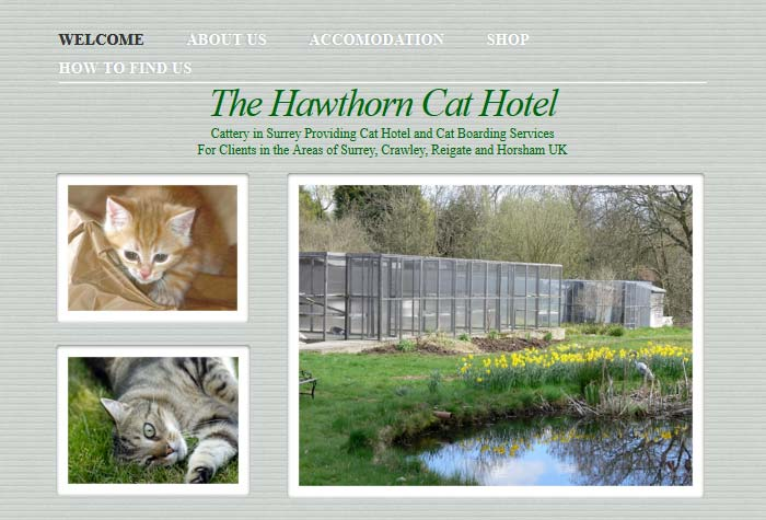 The Hawthorn Cat Hotel