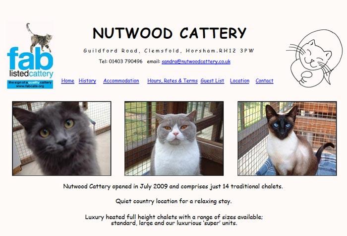 Cat Rescue Buckinghamshire