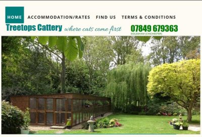Treetops cattery, Chichester