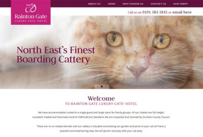 Rainton Gate Luxury Cat's Hotel