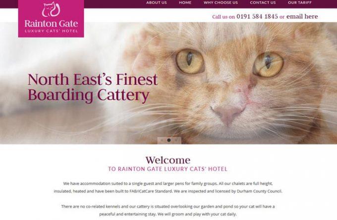 Rainton Gate Luxury Cat's Hotel