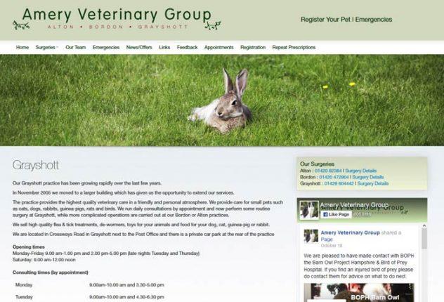 Amery Veterinary Group