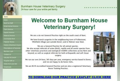 Havelock Veterinary Surgery