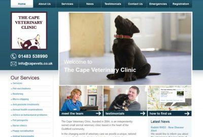 The Cape Veterinary Clinic