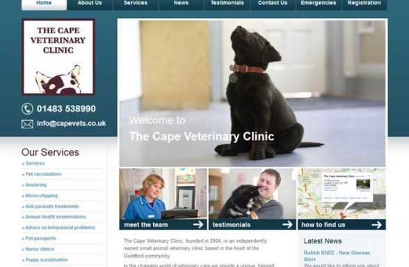 The Cape Veterinary Clinic