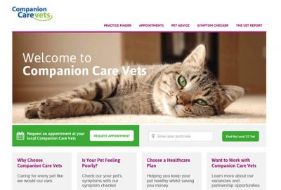 Companion Care, Bristol