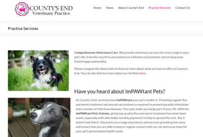 County's End Veterinary Practice