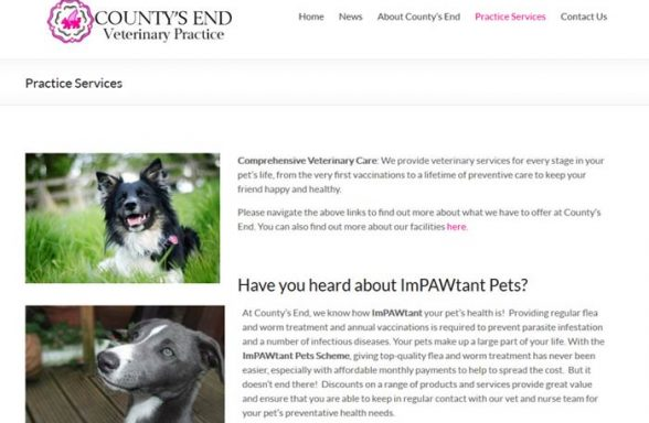 County's End Veterinary Practice
