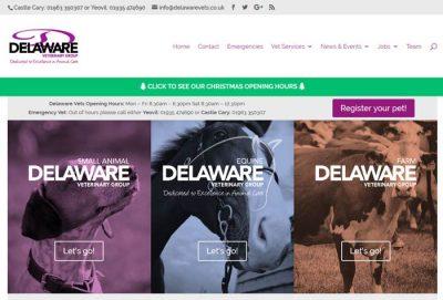 Delaware Veterinary Group