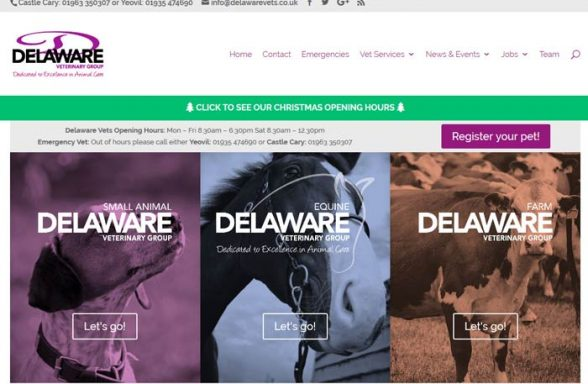 Delaware Veterinary Group