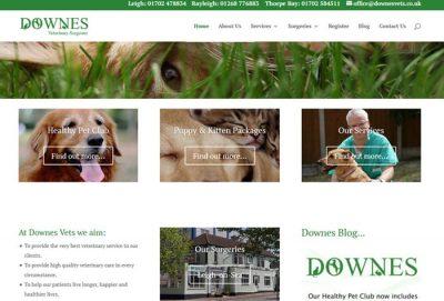 Downes Veterinary Surgeons