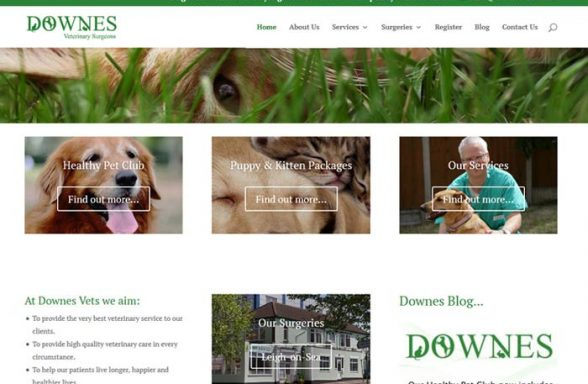 Downes Veterinary Surgeons