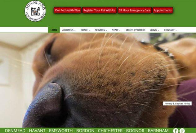 Downland Veterinary Group