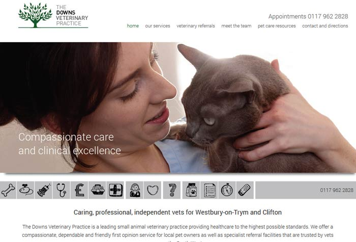 The Downs Veterinary Practice