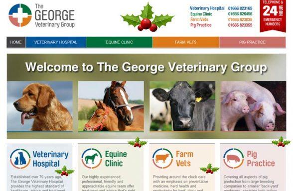 George Veterinary Group
