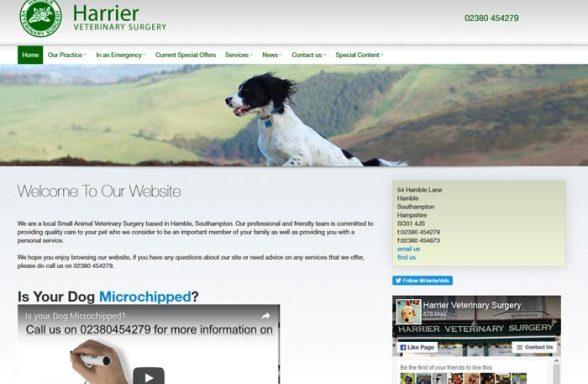 Harrier Veterinary Surgery