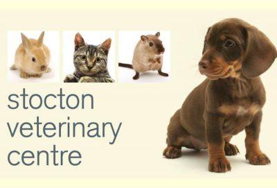 Thornbury Veterinary Centre