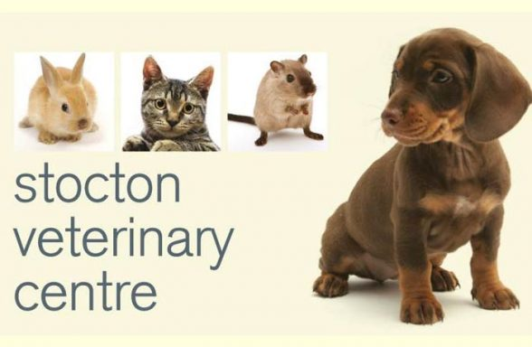Thornbury Veterinary Centre