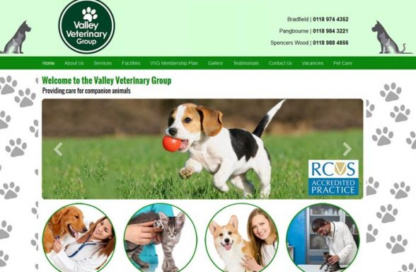 The Valley Veterinary Group