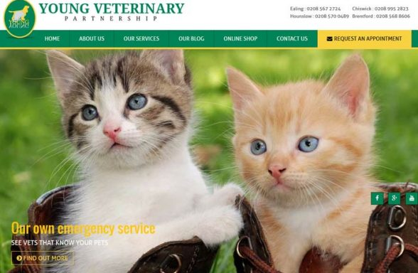 Young Veterinary Partnership
