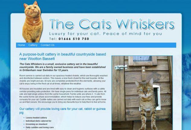 Cat Rescue Westbury Wiltshire