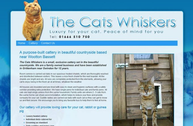 The Cat Whiskers
