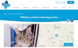Blue Cross Rehoming Service - Chippenham
