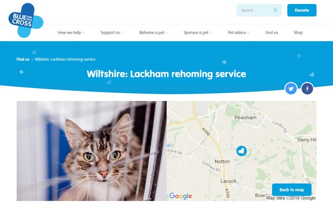 Blue Cross Rehoming Service - Chippenham