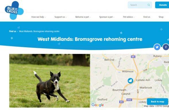 Blue Cross Rehoming Centre - Bromsgrove