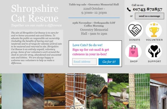 Rescue Cats Bromsgrove