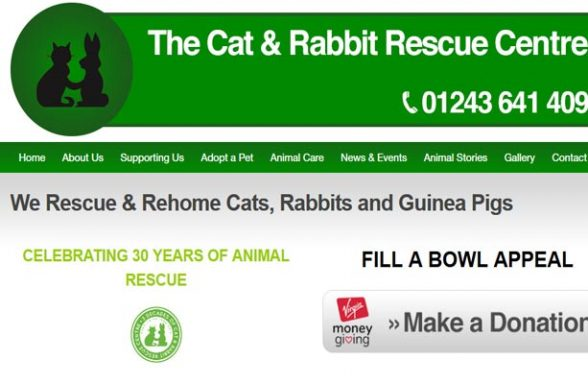 The Cat and Rabbit Rescue Centre - Chichester