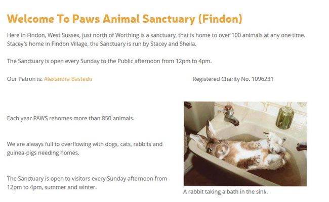 Paws Animal Sanctuary - Worthing